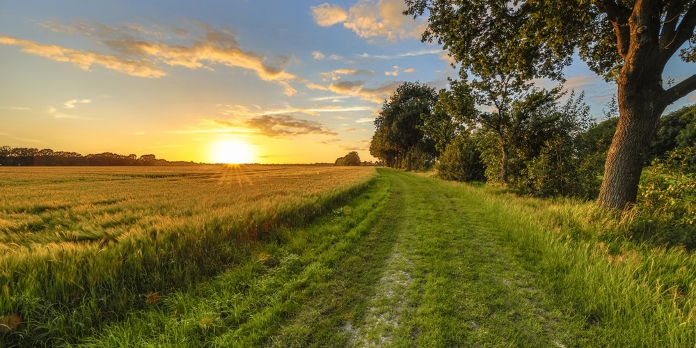 Natuur Nederland